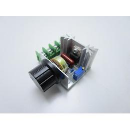 Driver AC 2000W 220V dimmer regolatore di velocità giri a corrente alternata