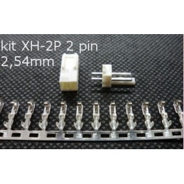 Kit Connettori XH-2P 2 PIN Leads Head 2,54mm per Elettronica Circuiti PCB