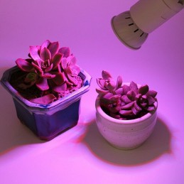 Lampadina led grow uv E27 54 diodi smd 2835 4w per crescita piante idroponica